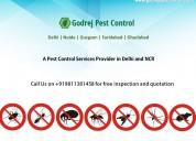 Pest control dwarka contact us +91-9811381458