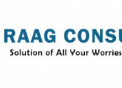 RAAG Consultant Internal Auditing Service