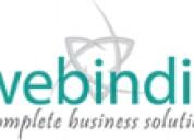 Web Hosting Company, MLM Web hosting Chennai India