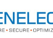 Get microsoft project server consulting - banelec