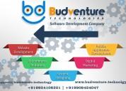 web development companies in india