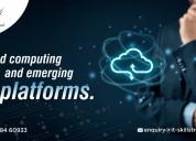 Cloud computing and emerging it platforms