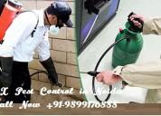 Dial +91-9899176888 pest control in noida