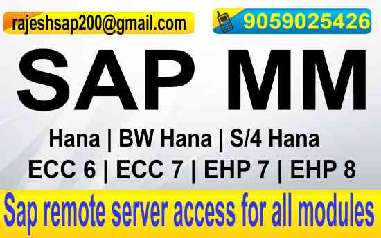 SAP SERVER ONLINE ACCESS, Hyderabad - Doplim - 313227