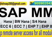 Sap server online access