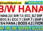 Sap b/w hana online access