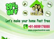pest control in noida dial +91-9899176888