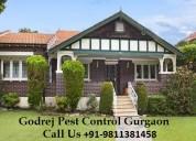 Godrej pest control indirapuram dial +91-981138145
