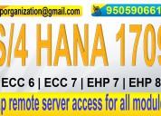 Sap s/4 hana online access