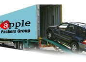 Excellent apple packers and movers junagadh