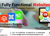 SEO Freelancer in India | Get Your Website Top pag