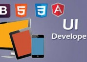 Advanced ui development training in zealsoft