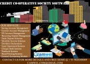Credit co-operative software a complete banking management