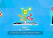 Website development ecommerce web designing indore