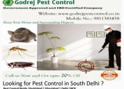 Termite treatment delhi call us +91-9811381458