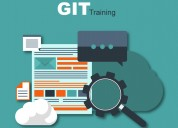 Live demo on git for free by industry experts
