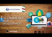 Ecommerce web design company in india