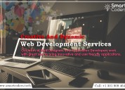 Custom Website Development Company USA