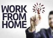 Work from home - govt registered company