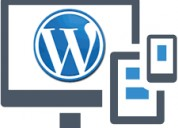 Services of wordpress theme instalation