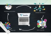 Tandra software development services and web