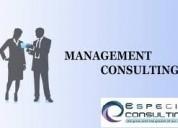 Management assurance consultants