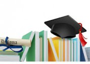 Higher education guidance with career support