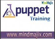 How to begin your career in puppet?