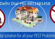 Call +91-9811381458 godrej pest control gurgaon
