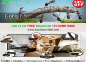 Call +91-9899176888 zx pest control in delhi