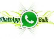 Whatsapp message services updates in mumbai.