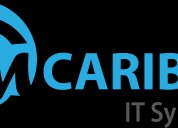 Software application development company | caribou