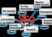 Six/6 months weeks industrial training in seo