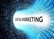 Six/6 months weeks  industrial training  marketing