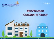 Best placement consultant in panipat