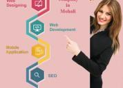 Web designing company in mohali | kinfo it solutio