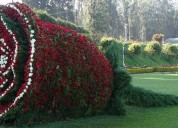 Mysore ooty one day tour package