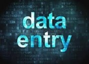 Data entry services in noida