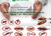 Termite treatment gurgaon, dial +91-9811381458
