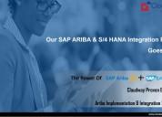 Cloudway consulting pvt ltd: sap ariba