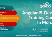 Angularjs development training in mohali, chandiga