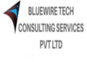 Bluewire tech seo service