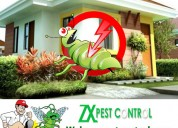 pest control for bed bugs in noida