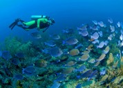 Best andaman adventure tour packages at andaman