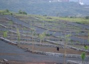 Land plots for sale in pune