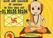 Inter caste love marriges expert +919915559104