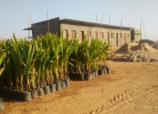 Greenacresfarmland at shadnagar on best prices
