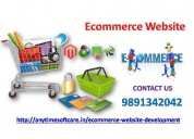 Obtain ecommerce website development service