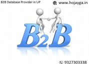 B2b database provider in up