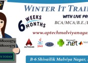 Aptech malviya nagar offers best it winter trainin
